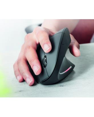 Mouse Inalámbrico Ergonometrico 1600DPI Verto Trust